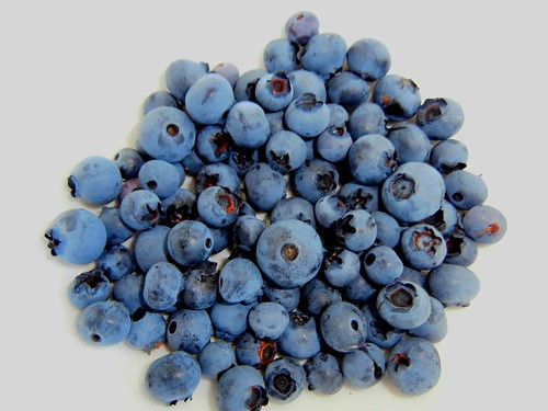 Clever Wins Wild Blueberry Solutions Challenge